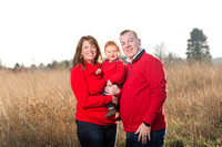 Christmas Mini Sessions 2017 - The Stewart Family!