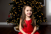 Christmas Mini Sessions - The Wrotney Family!